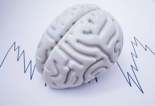 Tipos de crisis epilépticas